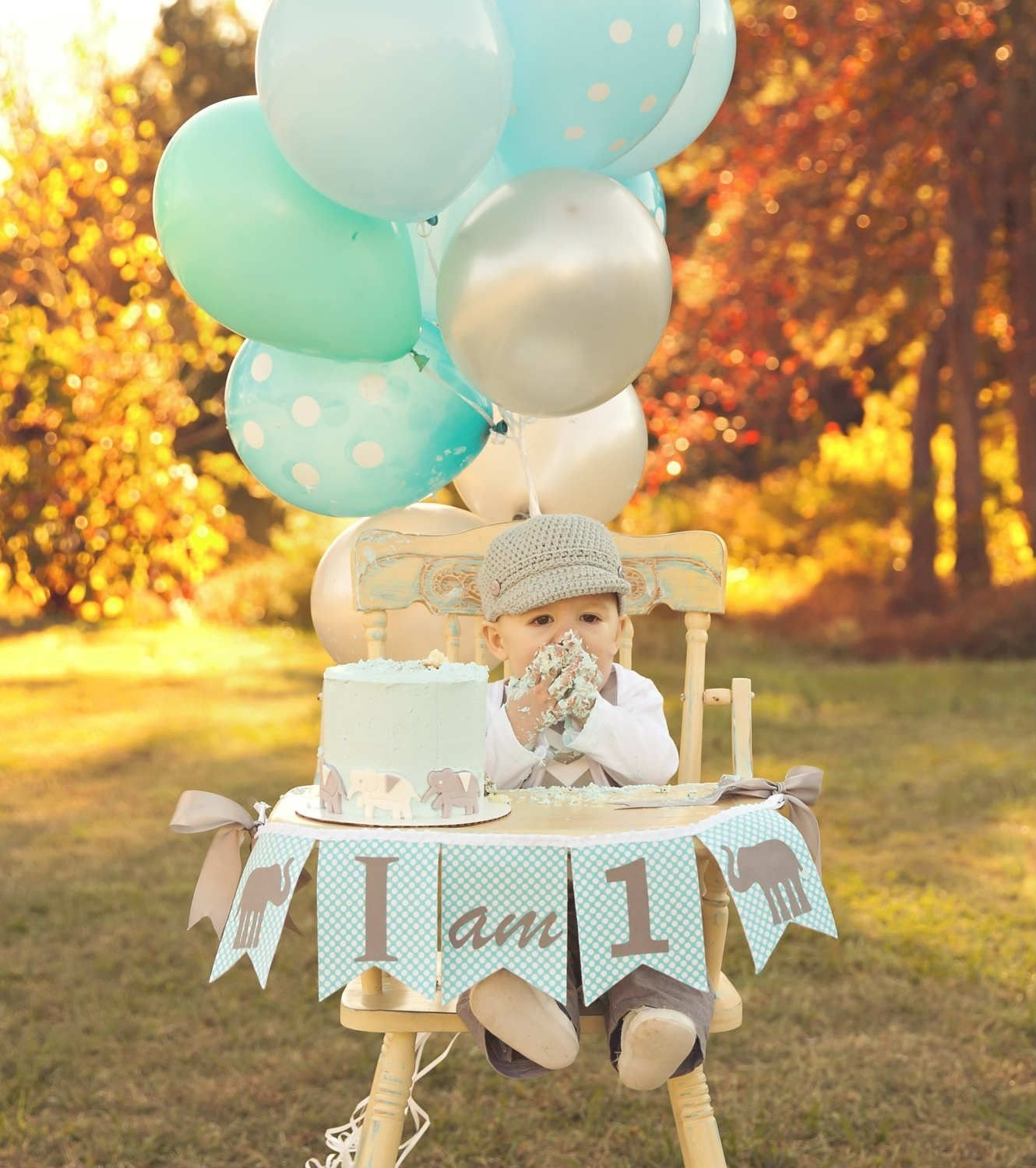 10 Most Recommended Baby Boy First Birthday Picture Ideas 1st Party For Boys