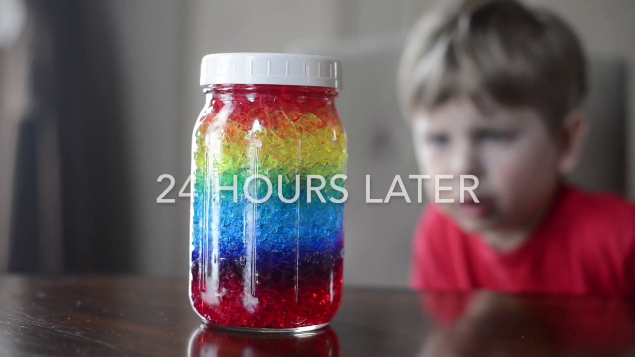 10 Nice Ideas For 3Rd Grade Science Projects 10 easy ranbow science activities for prek 3rd graders youtube 2020