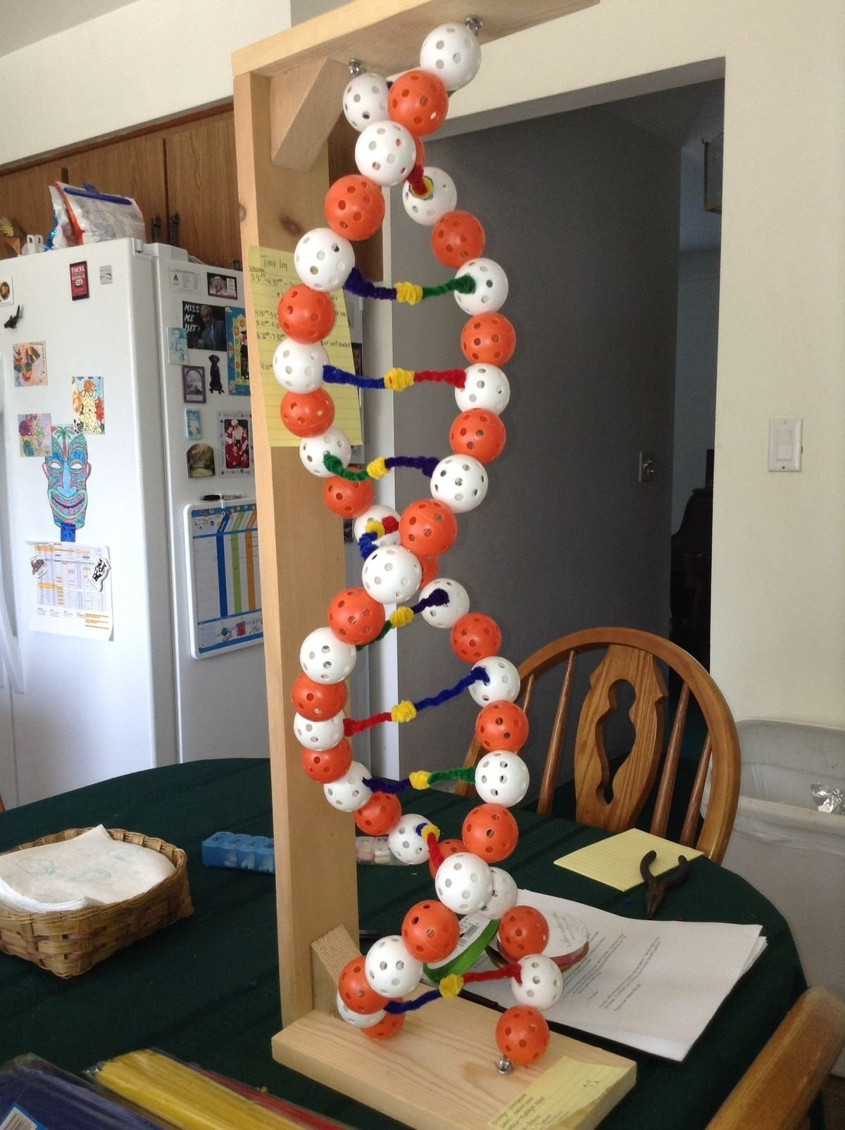 10 Attractive 3D Dna Model Project Ideas 1000 images about dna on pinterest double helix lego and
