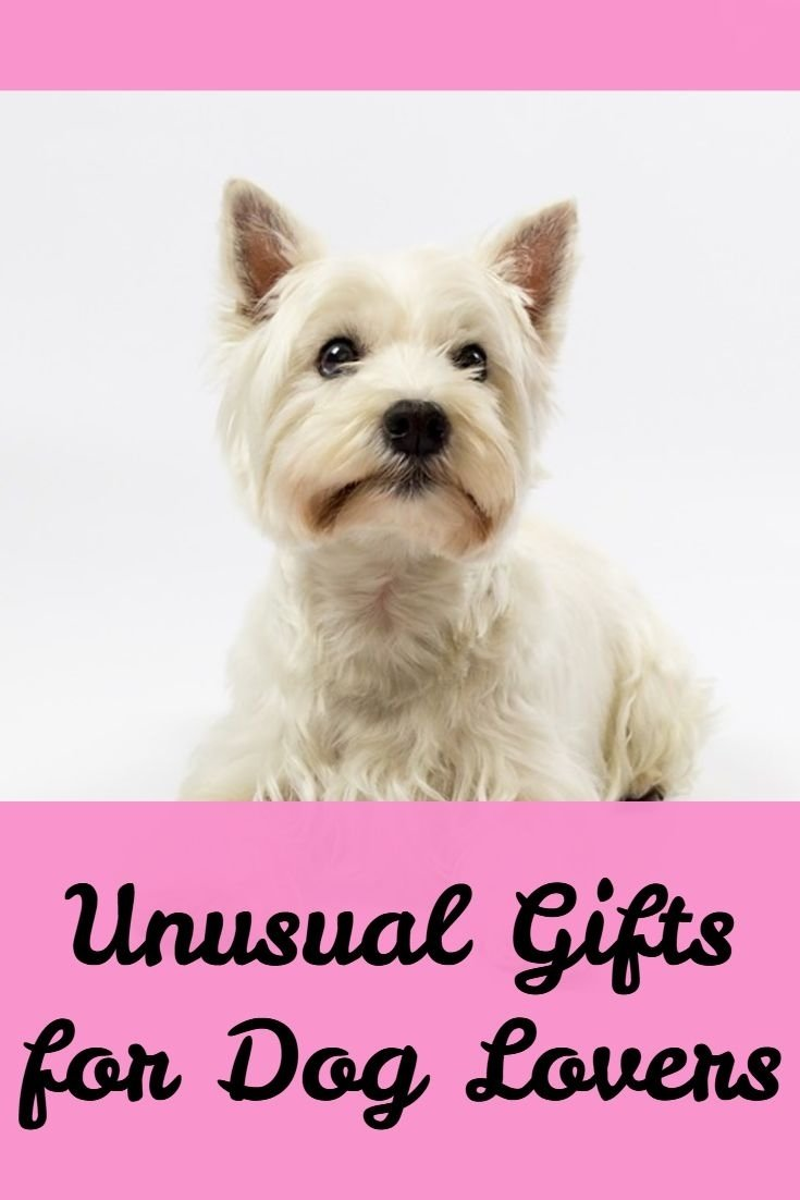 10 Stylish Gift Ideas For Dog Owners 109 best gift ideas for terrier dog lovers images on pinterest 2020