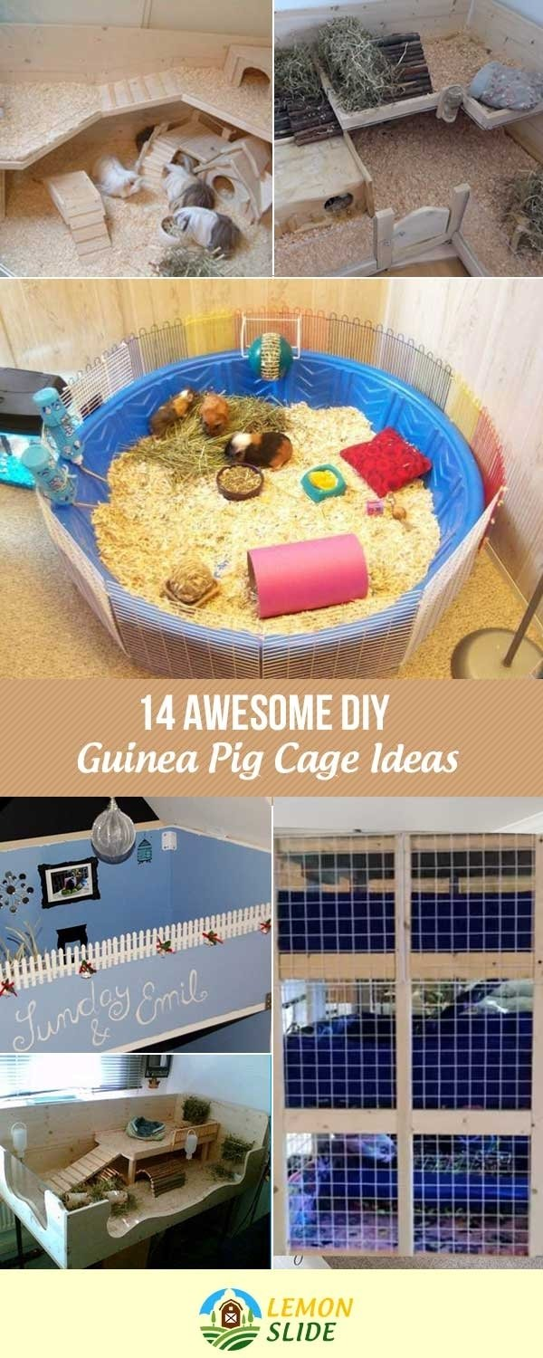 10 Ideal Homemade Guinea Pig Cage Ideas 13 awesome diy guinea pig cage ideas your pet love 2020