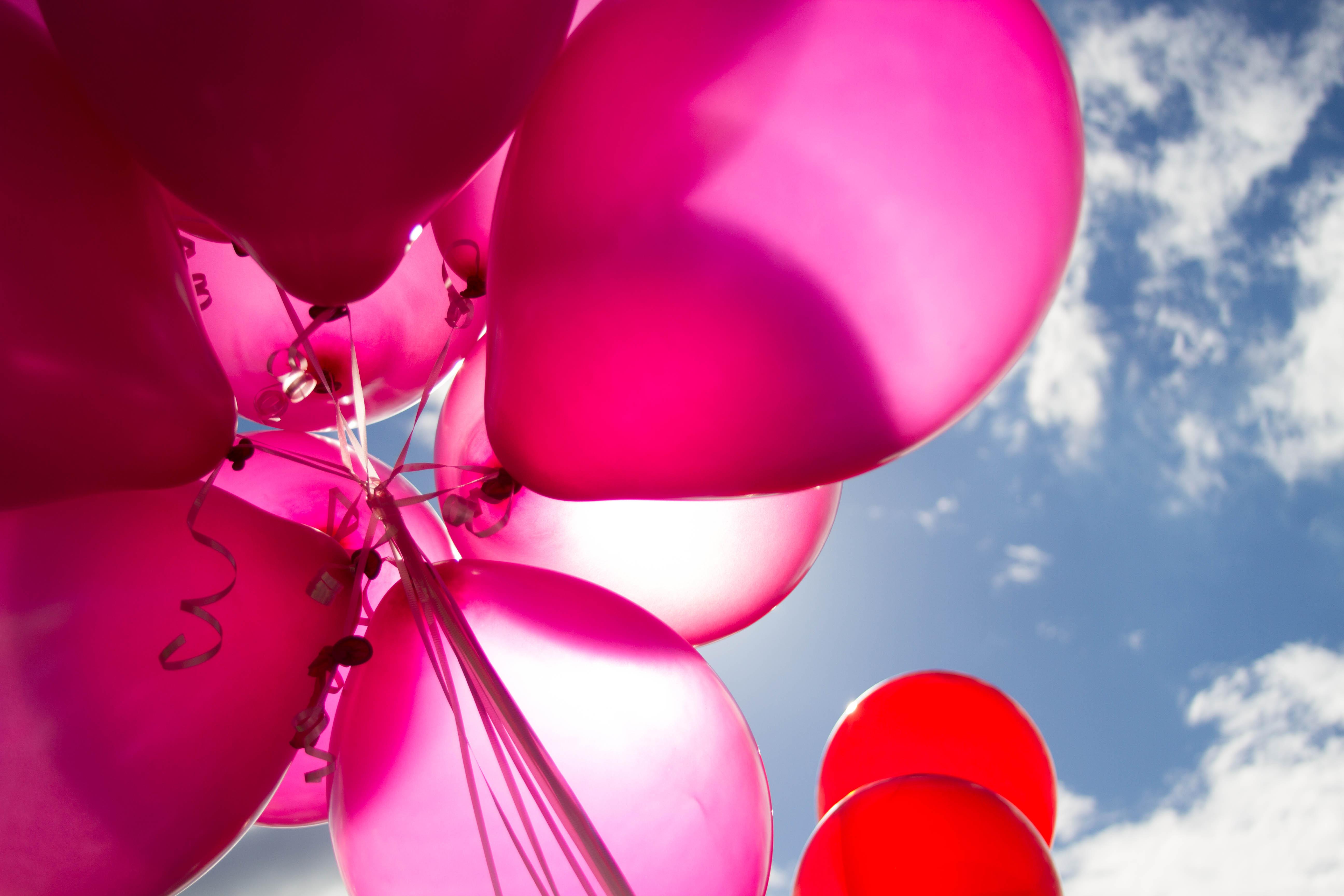 10 Cute Health And Safety Fair Ideas %name 2021
