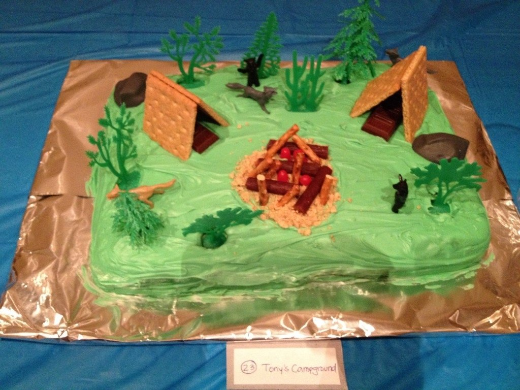 10 Cute Cub Scout Cake Decorating Ideas 17 cub scout cake ideas fyitina 2020