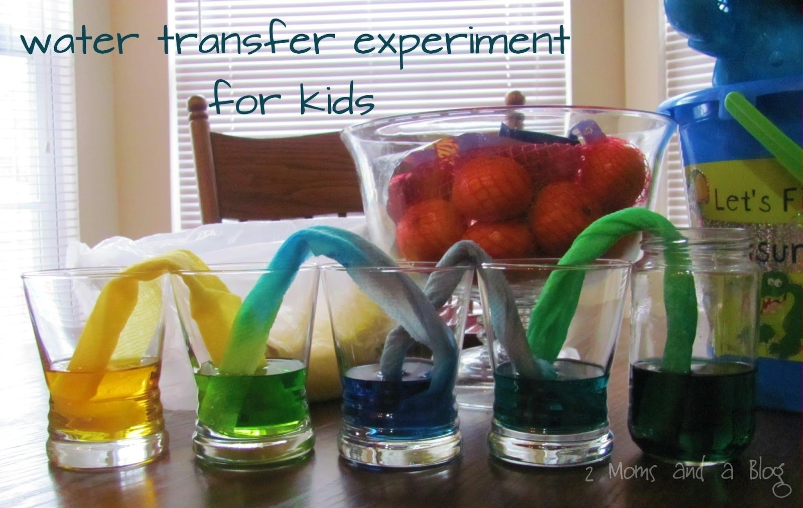 10 Attractive Science Fair Project Ideas With Food 2 moms and a blog paper towel water transfer science experiment for