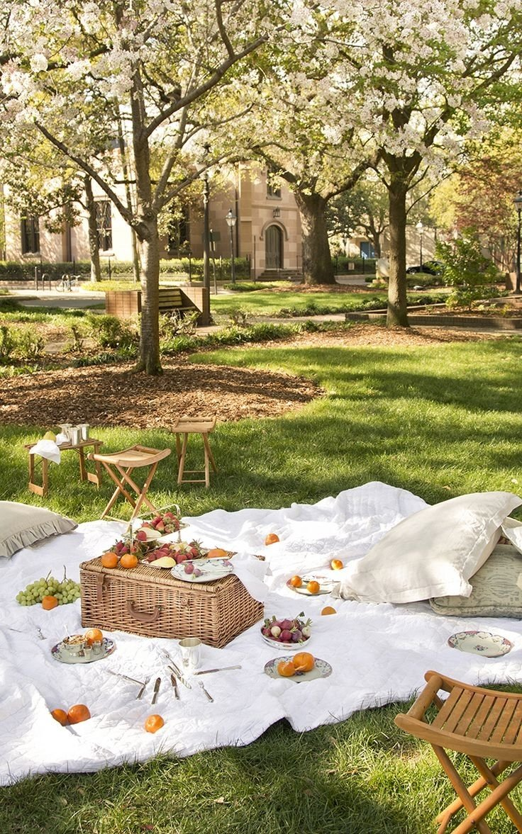 10 Trendy Picnic In The Park Ideas 24 best mothers day images on pinterest picnic party ideas and
