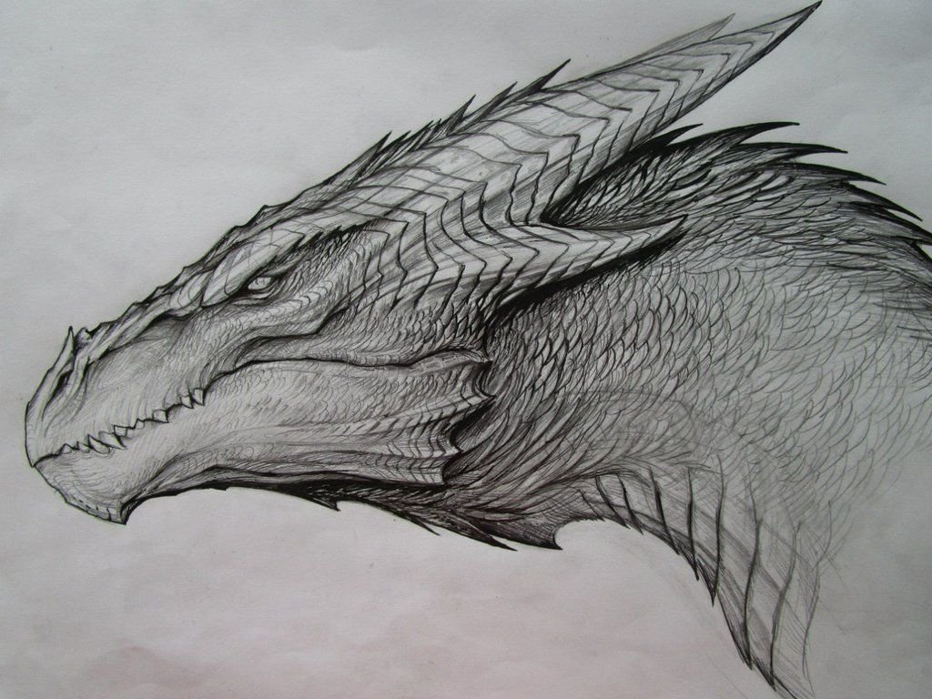 10 Fantastic Ideas For Things To Draw 25 cool things to draw that are easy and fun for beginners dragon 2020