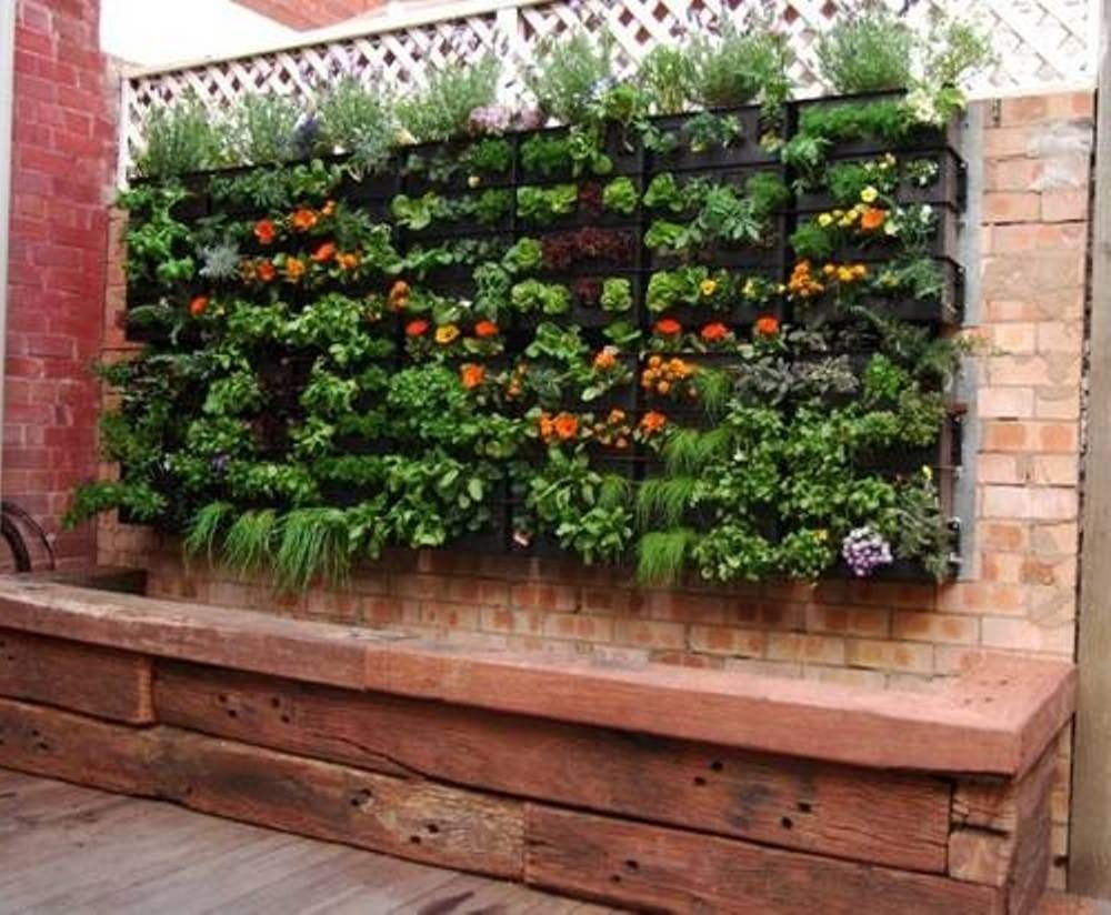 10 Pretty Vegetable Garden Ideas For Small Spaces
