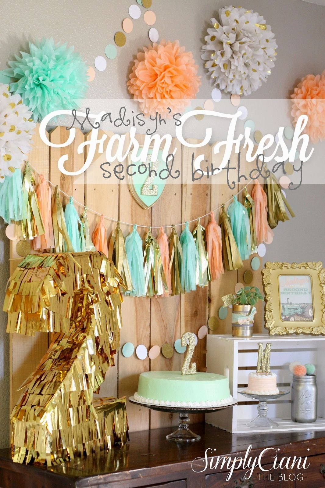 10 Stylish 2Nd Birthday Party Ideas Girl 2nd birthday party ideas winter decorating of party 2020