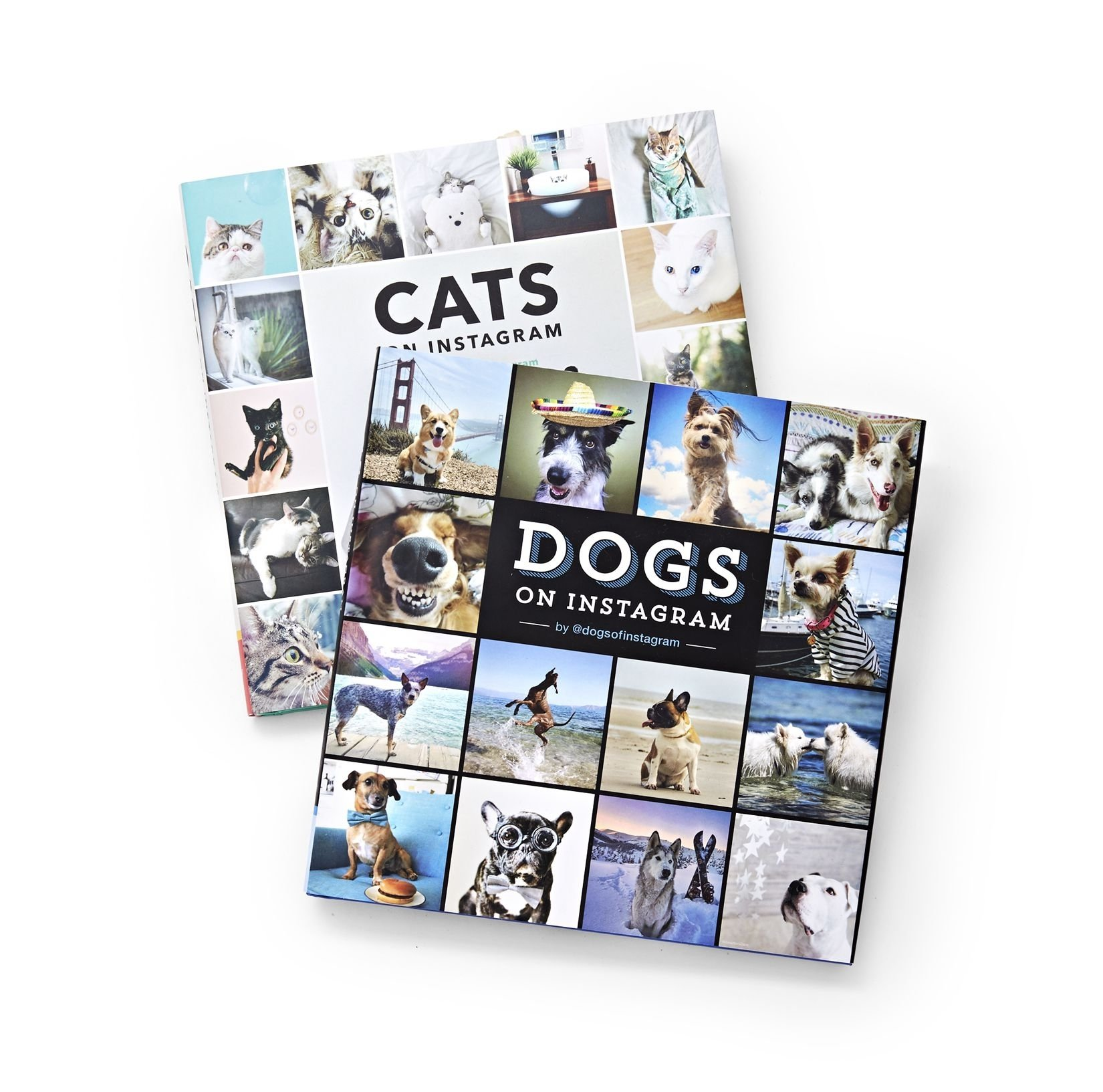 10 Fashionable Gift Ideas For Photography Lovers 30 best gifts for dog lovers 2018 unique dog owner gift ideas 2020