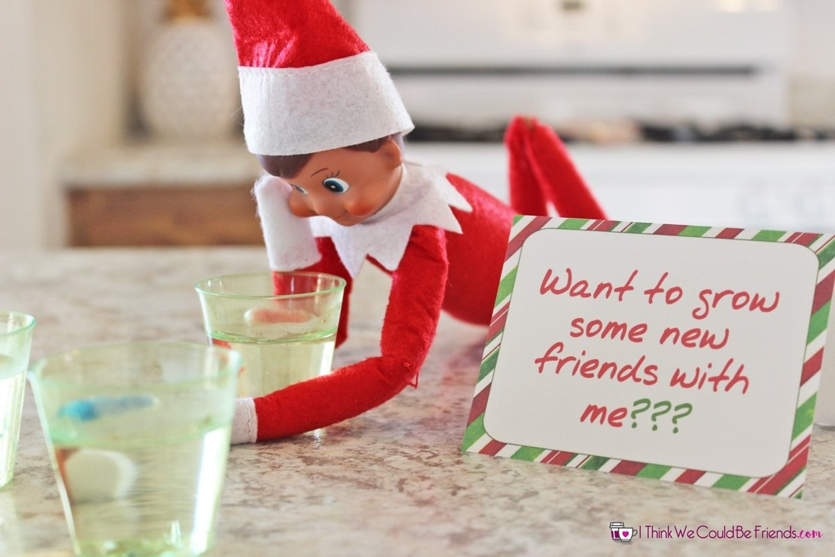 10 Unique Elf On The Self Ideas 35 new elf on the shelf ideas 9 grow new friends i think we 1 2021