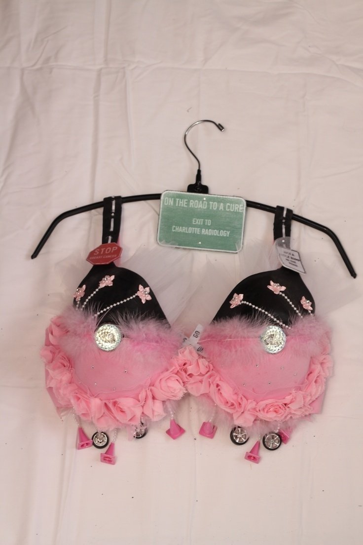 10 Unique Bras For A Cause Ideas 443 best decorate your bra for breast cancer images on pinterest