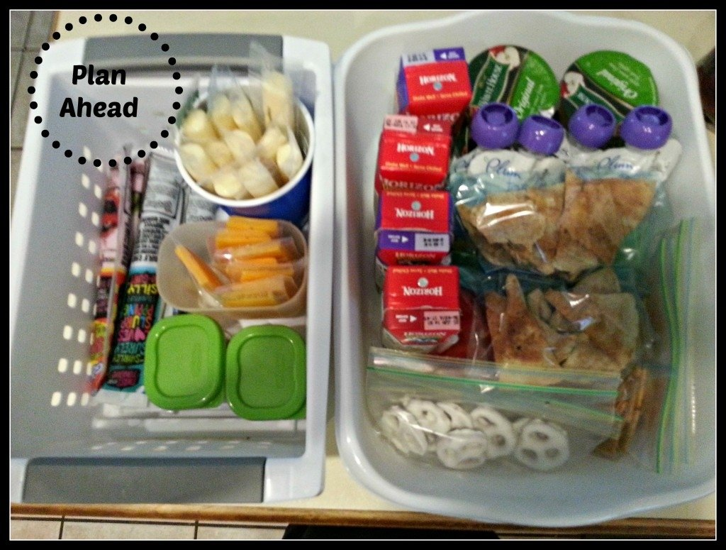 10 Nice Lunch Ideas For Picky Toddlers 5 lunch ideas for the picky toddler tampa bay moms blog 1