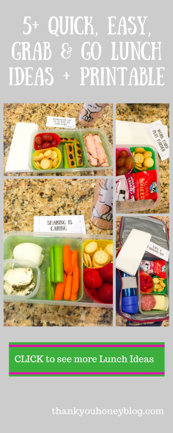 10 Stylish Grab And Go Lunch Ideas 5 quick easy grab go lunch ideas printable 2020