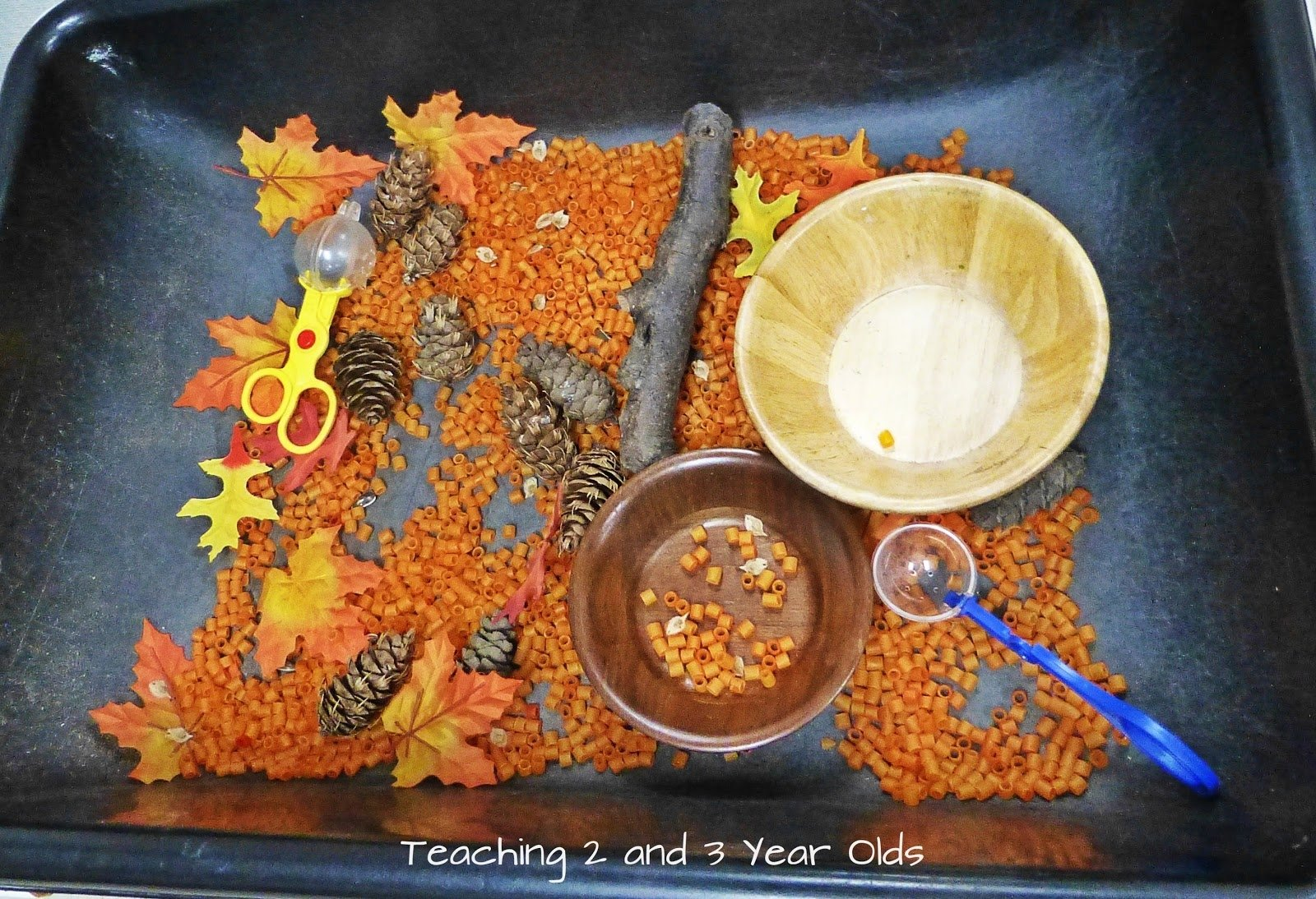 10 Trendy Sensory Table Ideas For Preschoolers