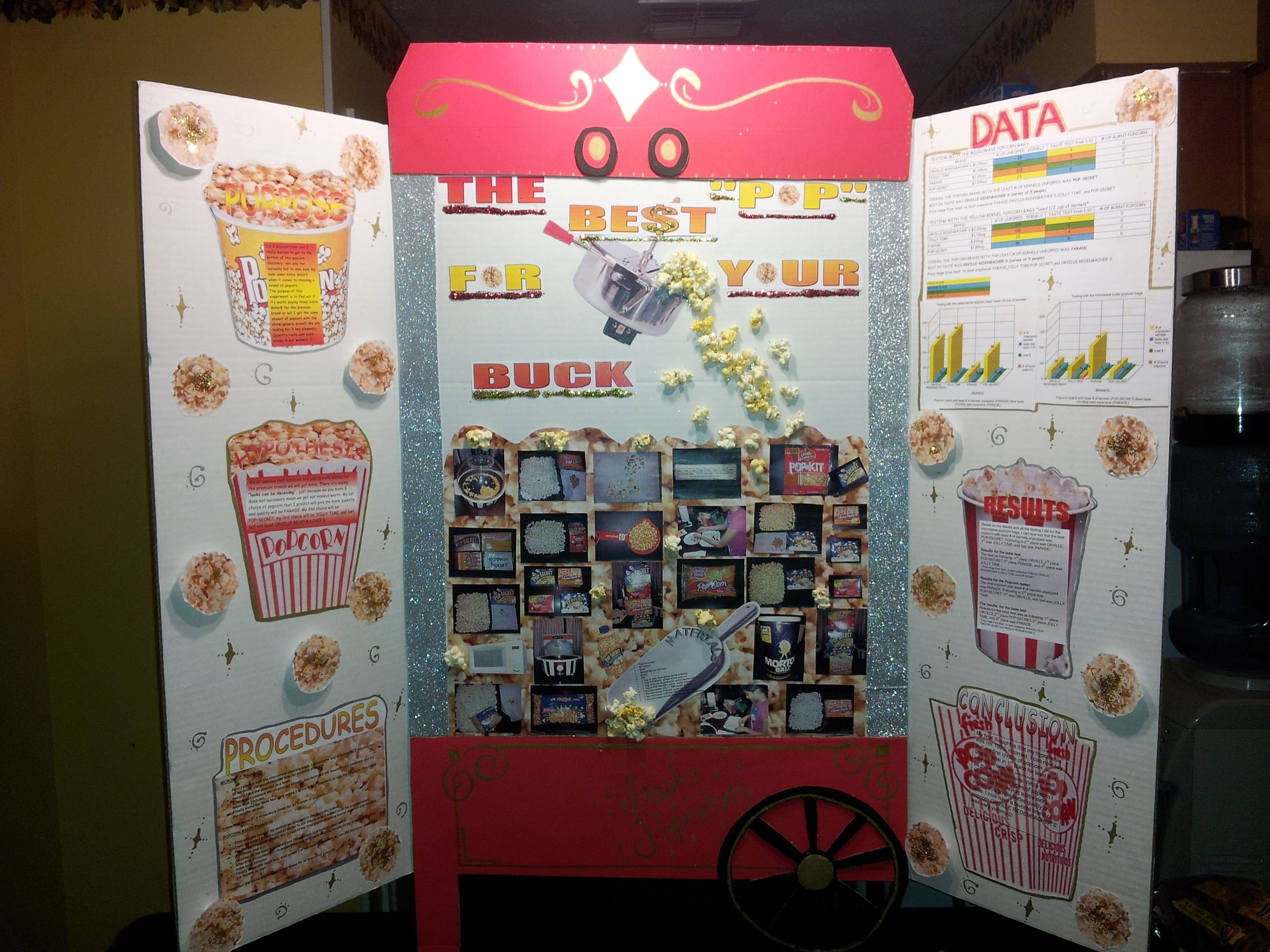 10 Lovely Science Fair Project Ideas For 10Th Grade 5th grade science fair project won 2nd place school project ideas