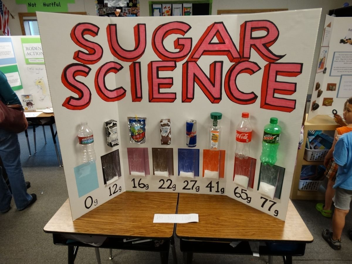 10 Trendy 4Th Grade Science Project Ideas 6dc4c4a732b38c2d9f3e338283326970 1200x900 pixels science 2020