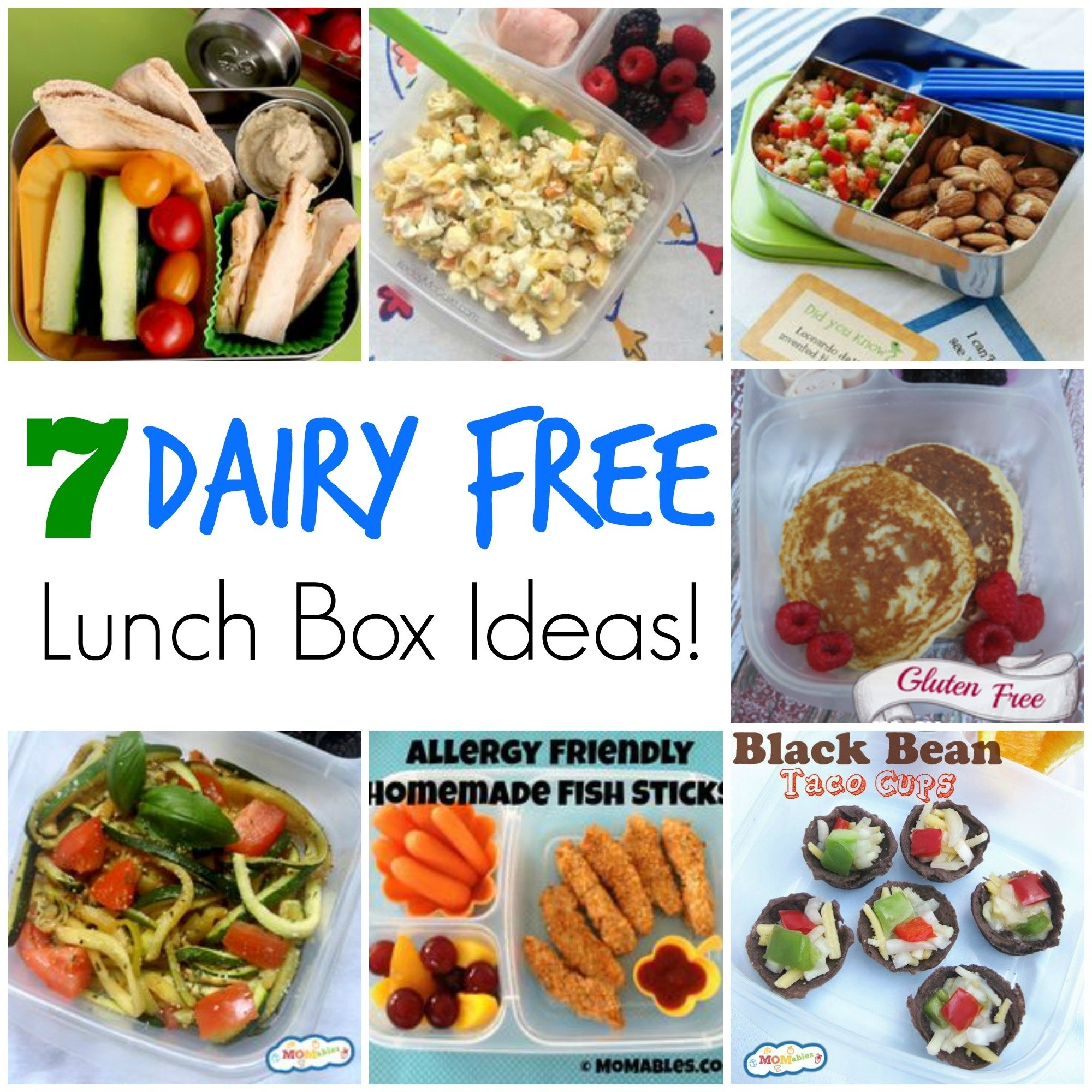 10 Spectacular Kids Lunch Ideas For Picky Eaters 7 dairy free school lunch ideas 2020