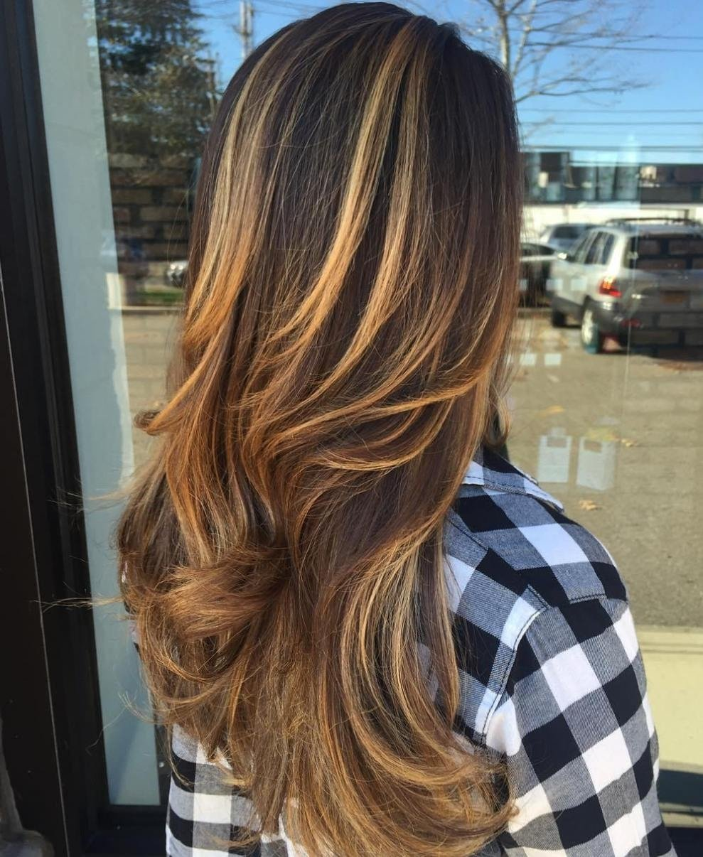 10 Famous Dark Brown Hair Color Ideas With Highlights