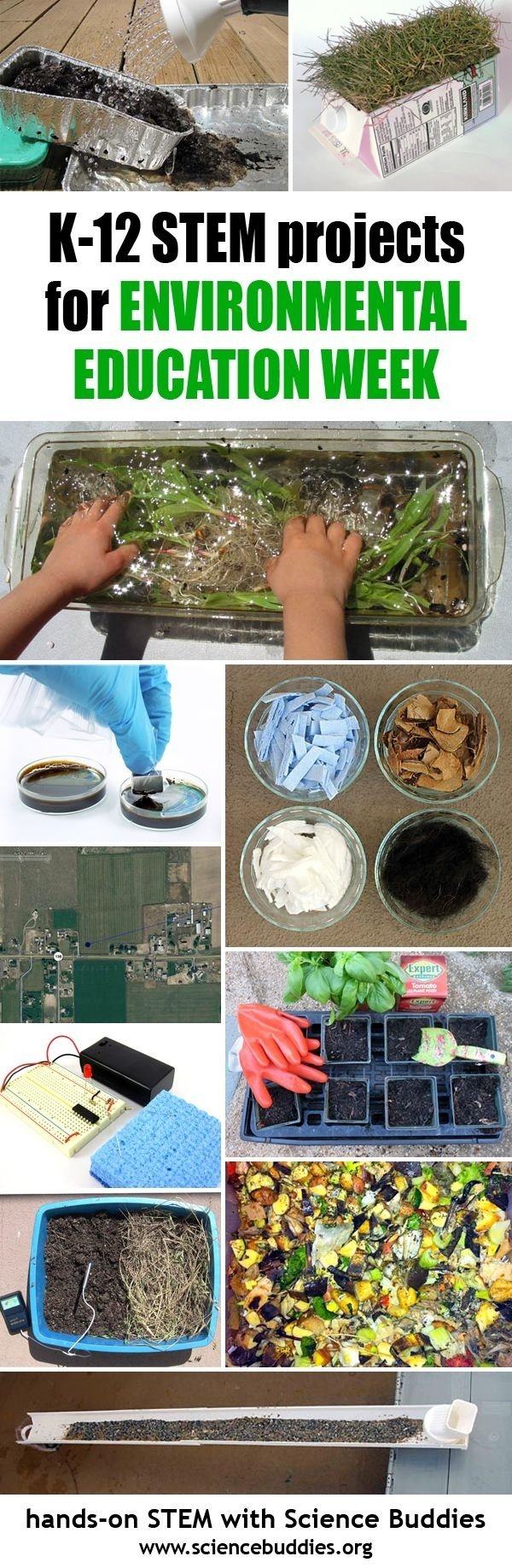 10 Pretty Science Buddies Science Fair Ideas 727 best k 12 science project ideas images on pinterest lesson 1 2020