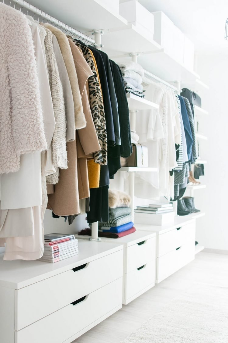 10 Amazing Walk In Closet Design Ideas 75 cool walk in closet design ideas shelterness small walk in closet