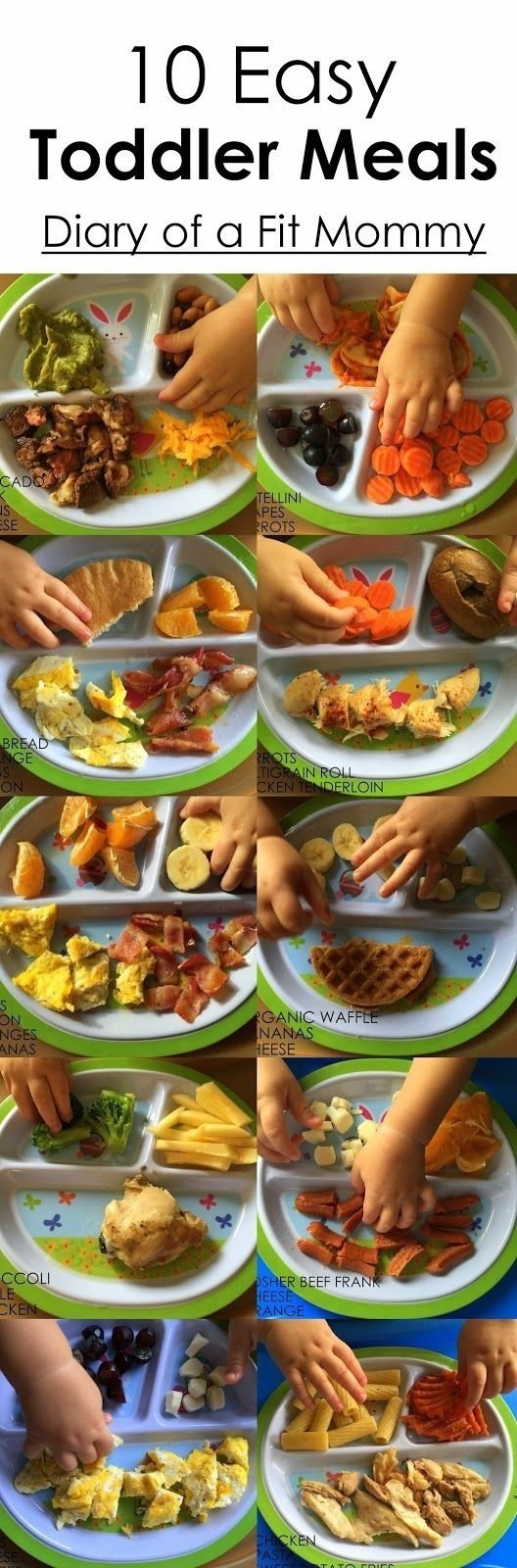 10 famous lunch ideas for 2 year old