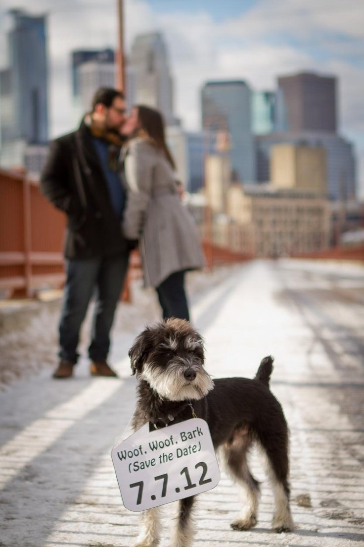 10 Nice Save The Date Ideas With Dogs 91 best save the dates images on pinterest wedding stuff 2020