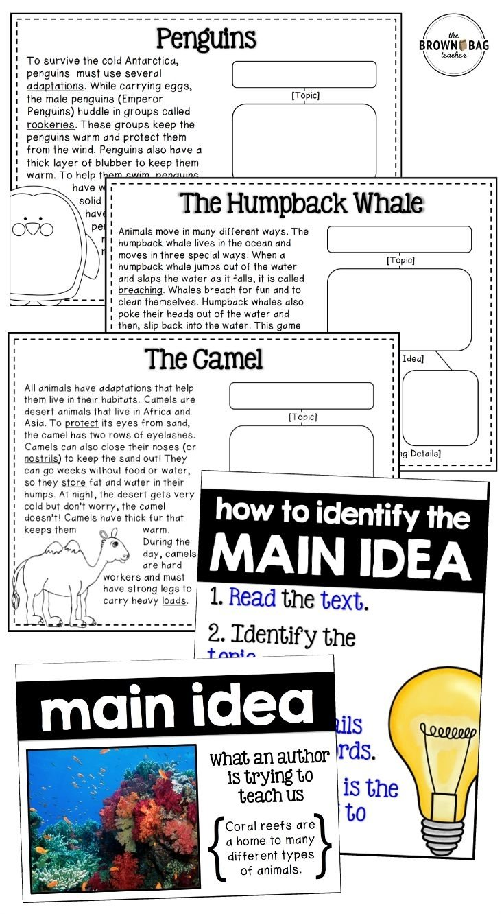 10 Lovable Main Idea Practice 4Th Grade 97 best main idea reading comprehension passages images on pinterest 2020