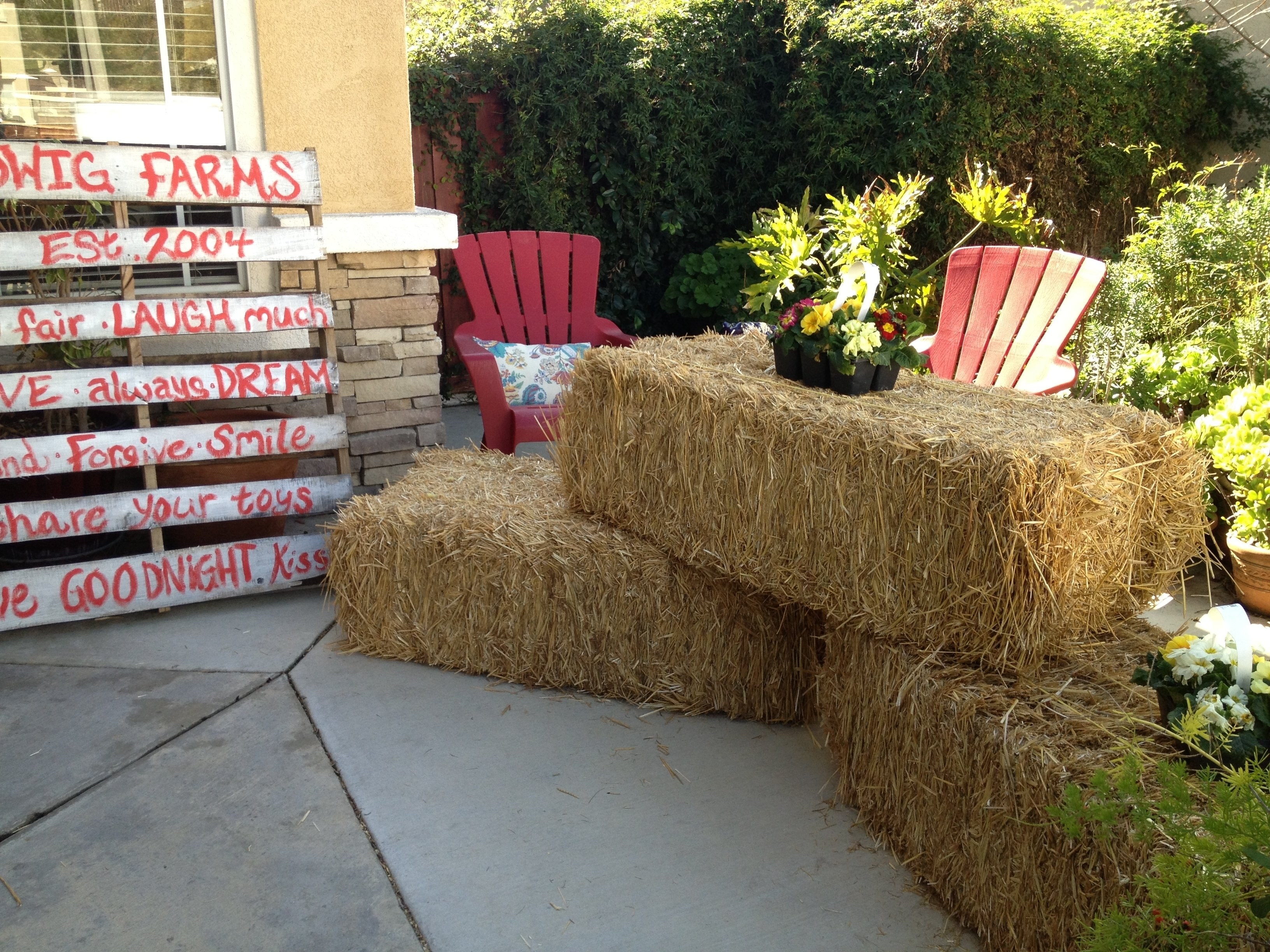 10 Gorgeous Petting Zoo Birthday Party Ideas a look back last years farm party with petting zoo corral fun 2020
