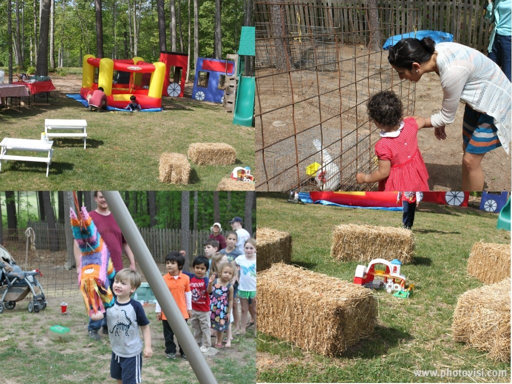 10 Gorgeous Petting Zoo Birthday Party Ideas a petting zoo birthday party ameetabakes 2020