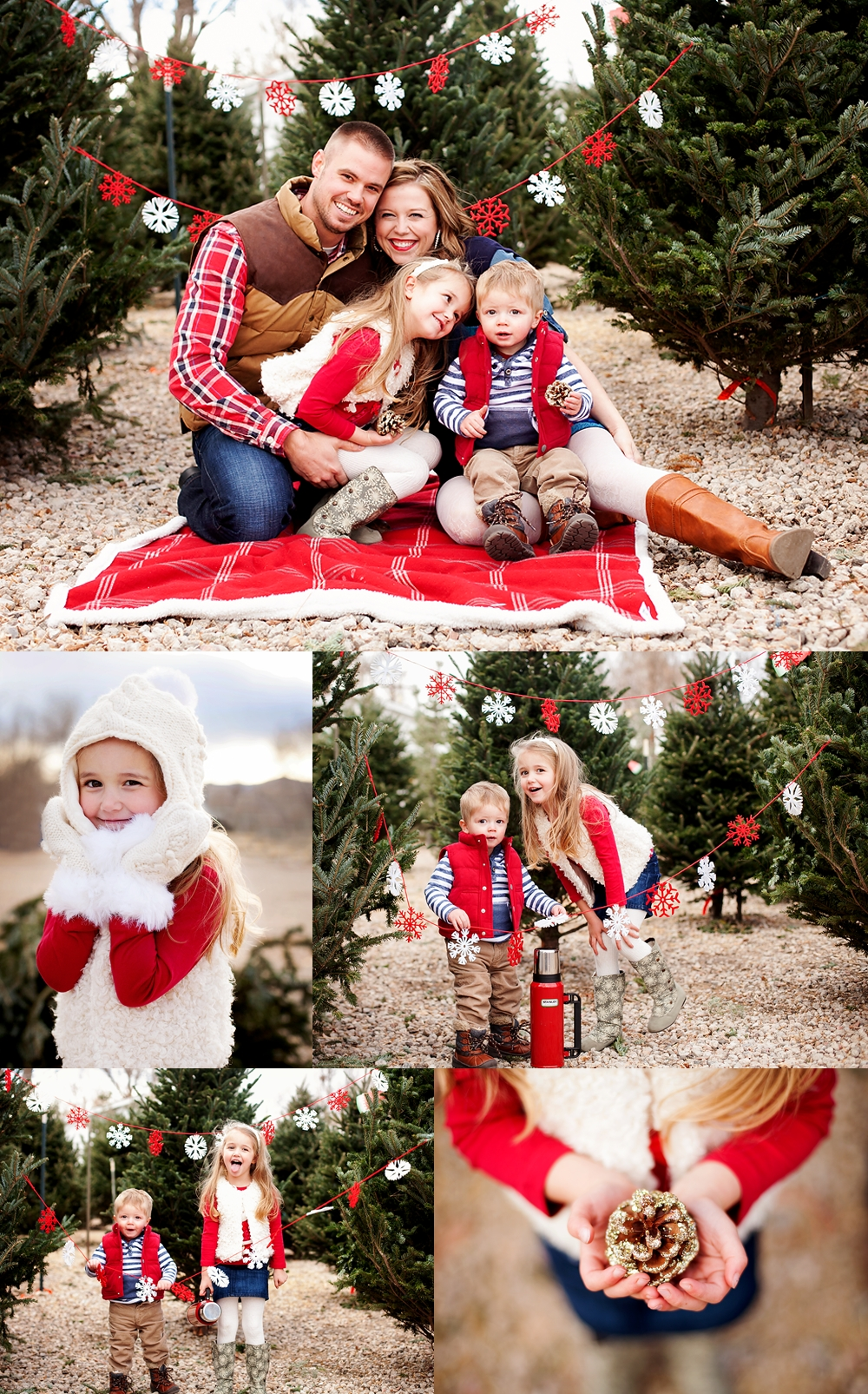 10 Cute Cute Family Christmas Picture Ideas a very merry session merry garlands and backyard 2020