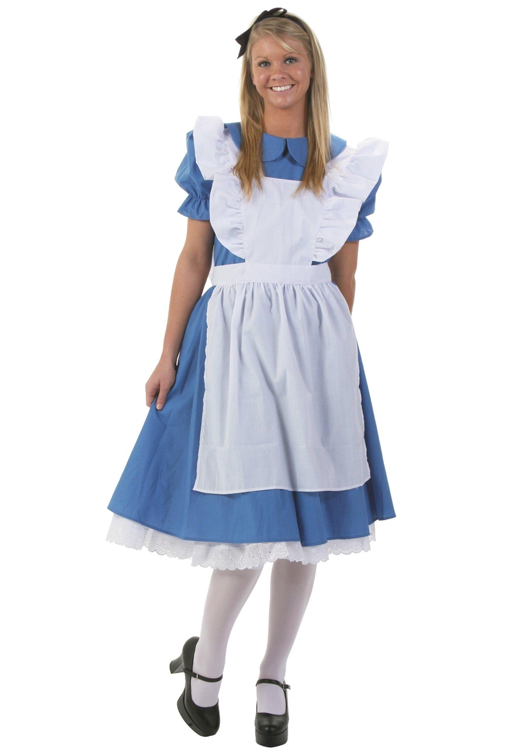 10 Gorgeous Alice And Wonderland Costume Ideas adult alice costume womens alice in wonderland costume dress 2020