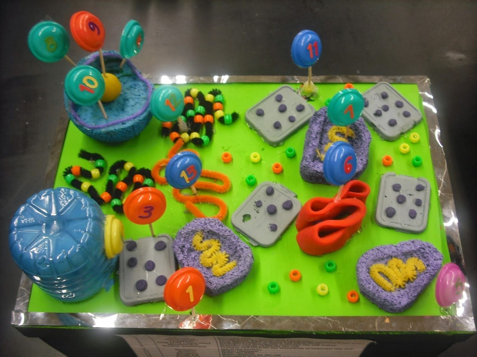 animal and plant cell modelsmr. lalata's 7th/8th grade students