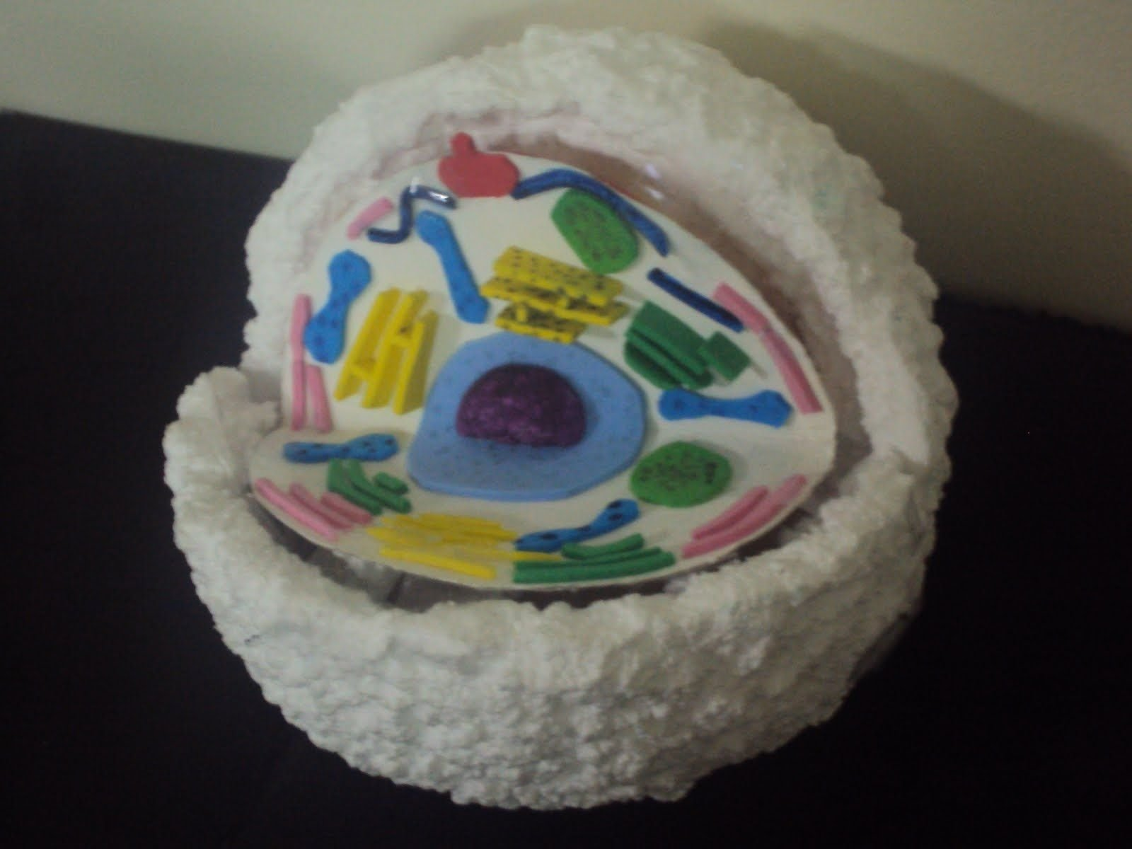 10 Trendy 3D Animal Cell Model Project Ideas animal cell model 5th grade animal cell project ideas animal cell 2020