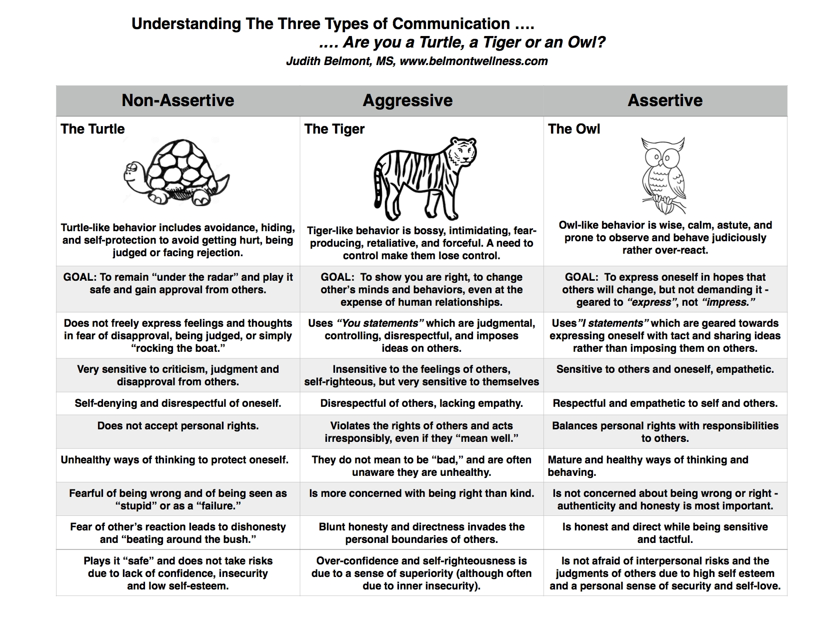10 Unique Group Ideas For Mental Health are you a turtle a tiger or an owl mental health experiences 2021