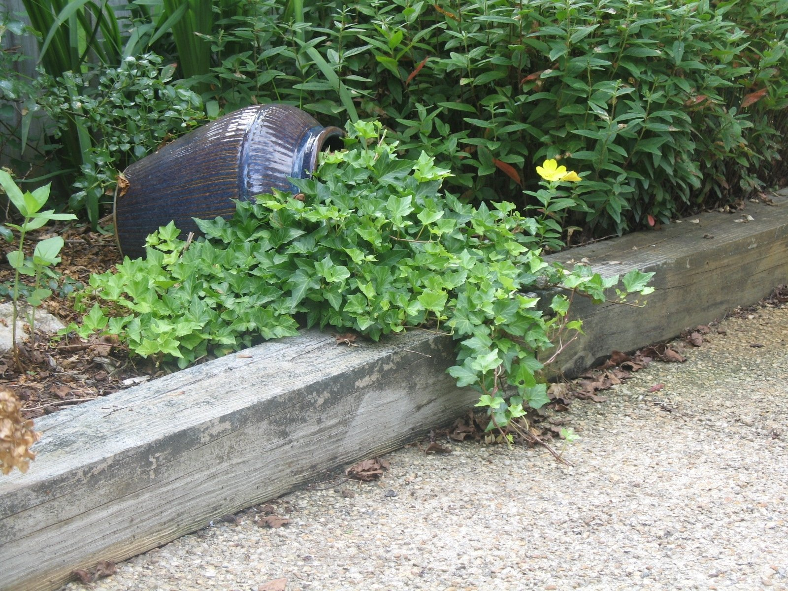 10 Lovable Cheap Flower Bed Edging Ideas awesome do it yourself garden edging ideas lawn uk with wooden 2021