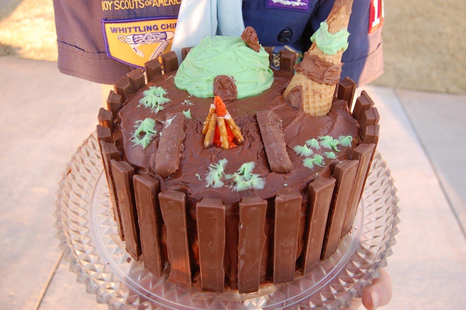 10 Cute Cub Scout Cake Decorating Ideas babblings and more boy scout cake decorating contest 2020