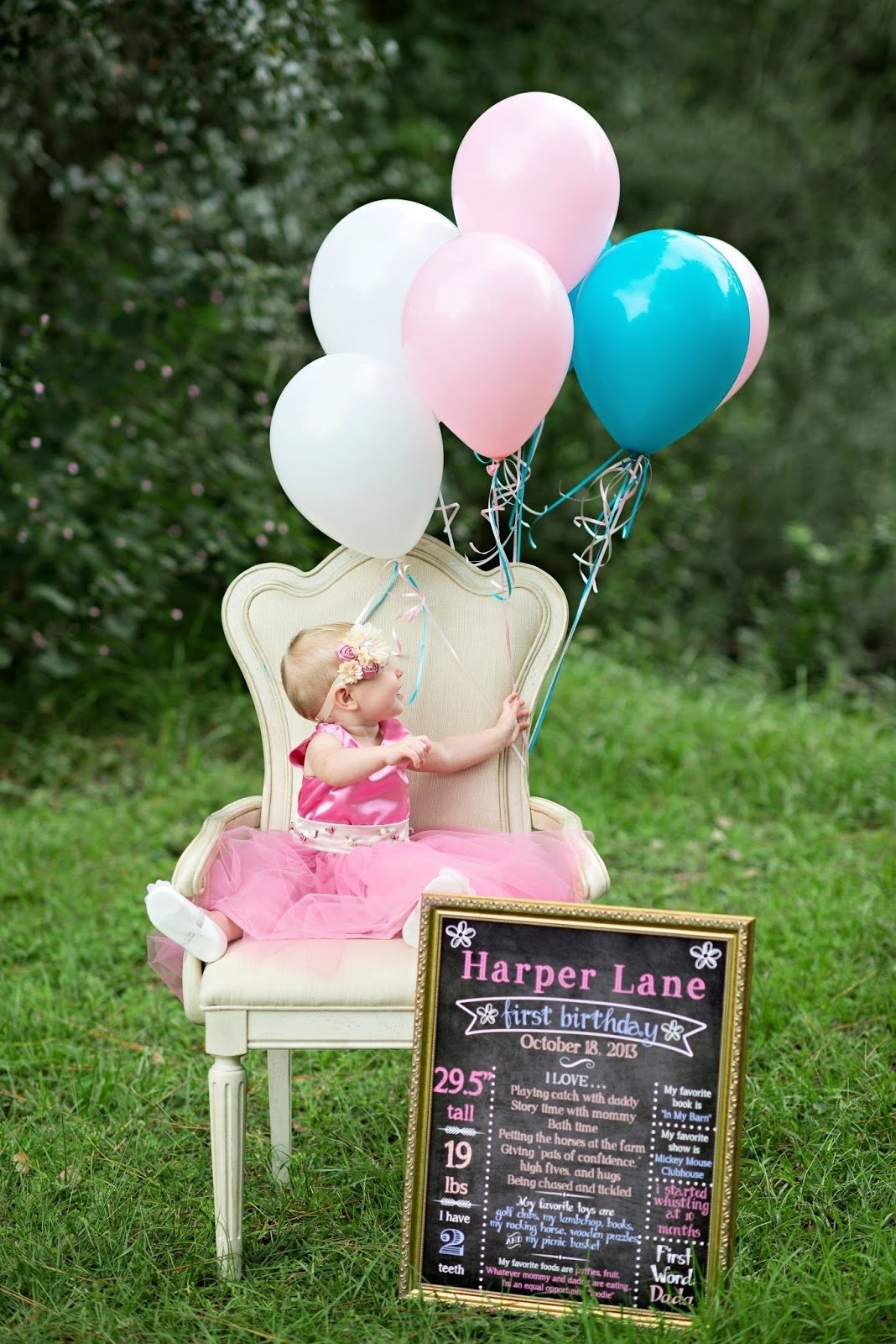 10 Fabulous 1St Birthday Photo Shoot Ideas babies harper lanes first birthday photoshoot life baby baby 2020