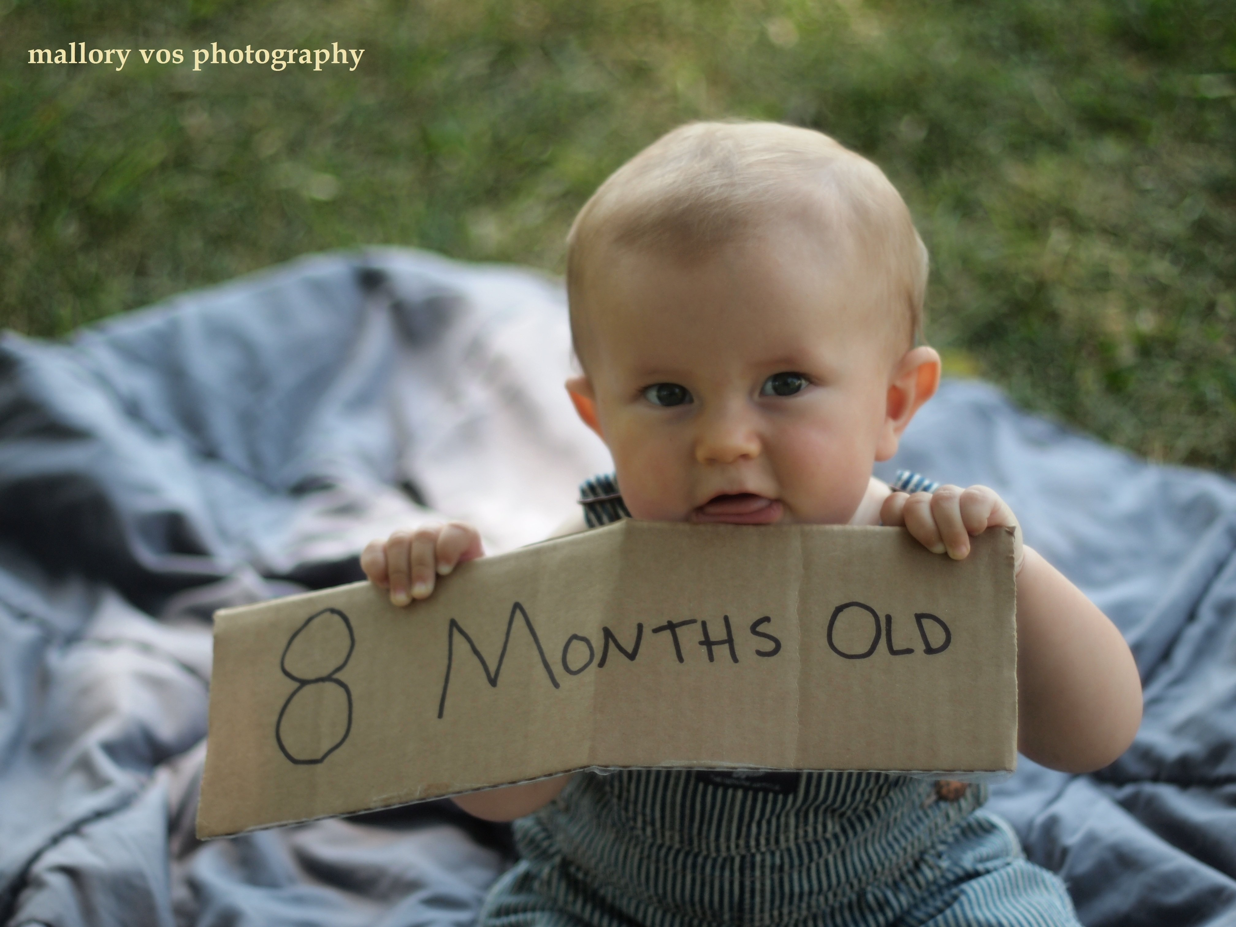 10 Stunning Baby Boy Photo Shoot Ideas 8 Month Photography