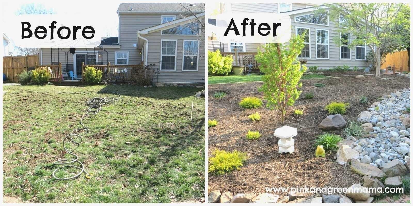 backyard ideas with dogs luxury backyard landscaping ideas dogs