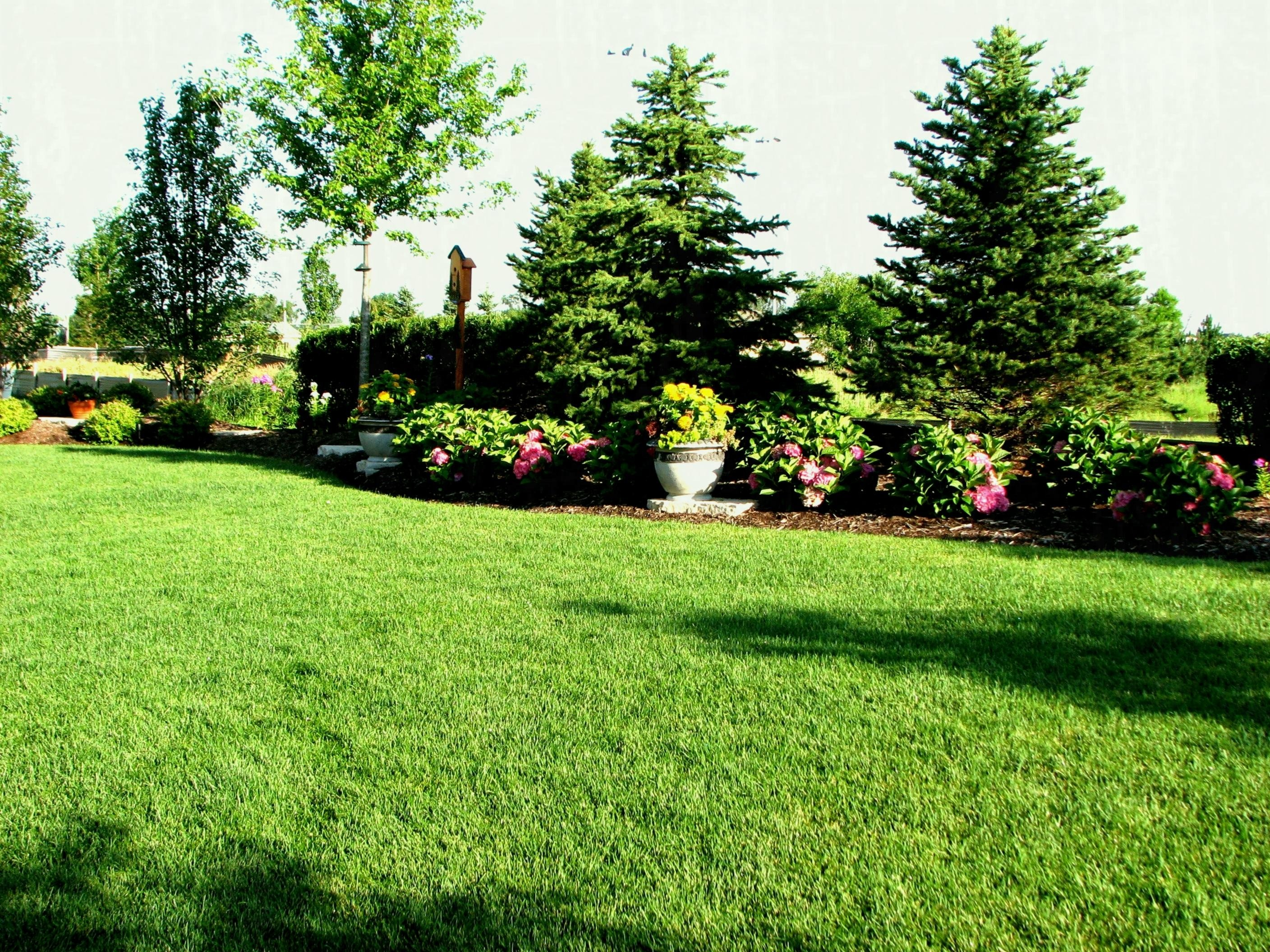 10 Most Recommended Backyard Landscaping Ideas For Privacy backyard landscaping for privacy existing home home garden ideas 2020