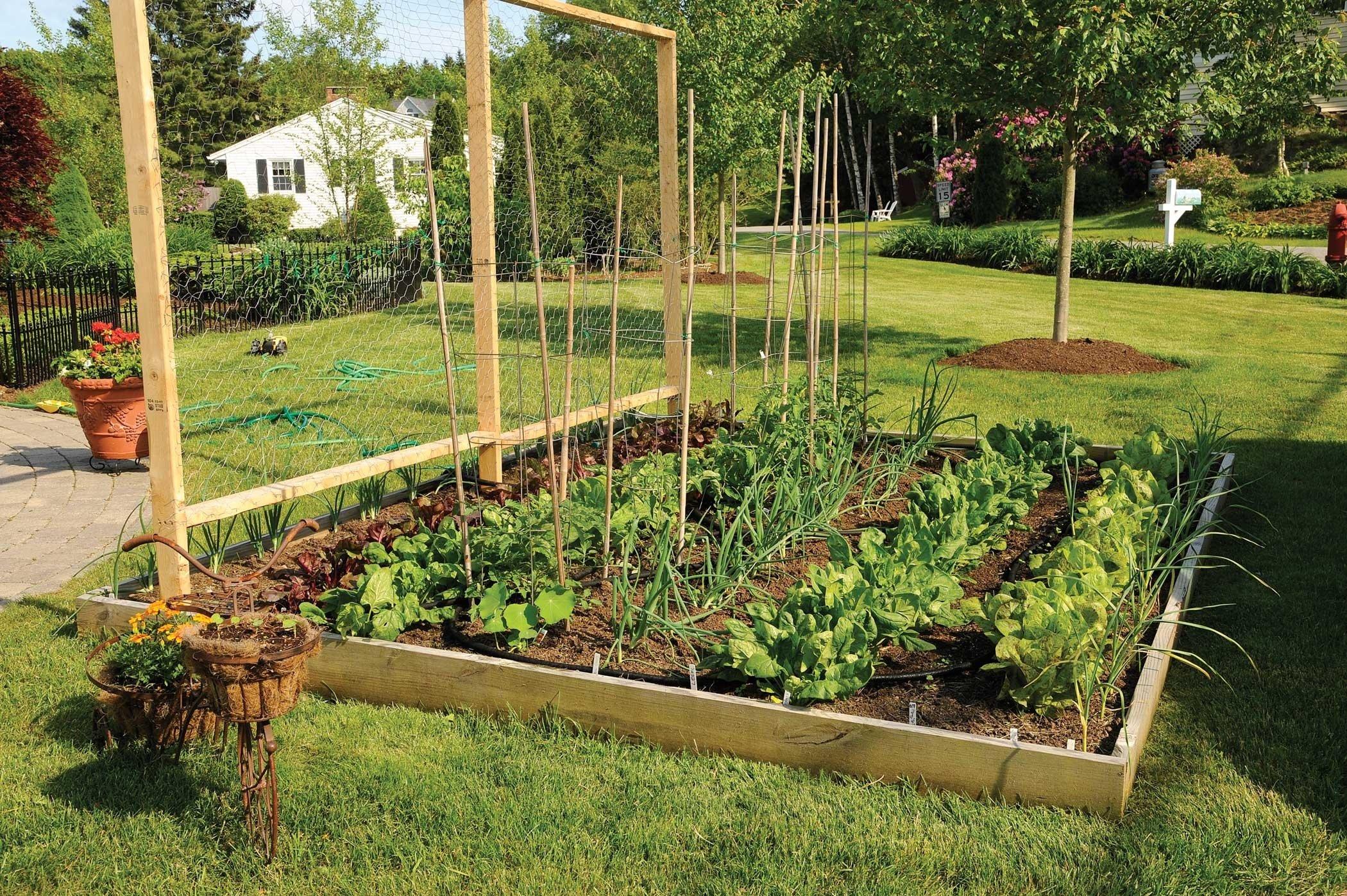 beautiful raised bed gardening ideas #2050 | latest decoration ideas