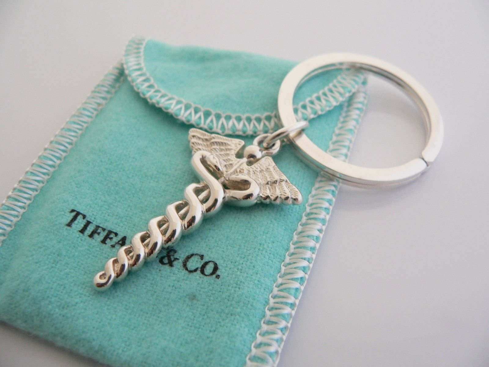 10 Unique Nursing School Graduation Gift Ideas beautiful tiffany co keychain great idea for grad nursing 2020