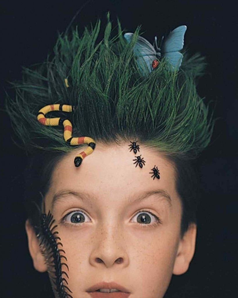 10 Elegant Crazy Hair Ideas For Boys best crazy hair day ideas 30 ideas for crazy hair day at school for 2 2020