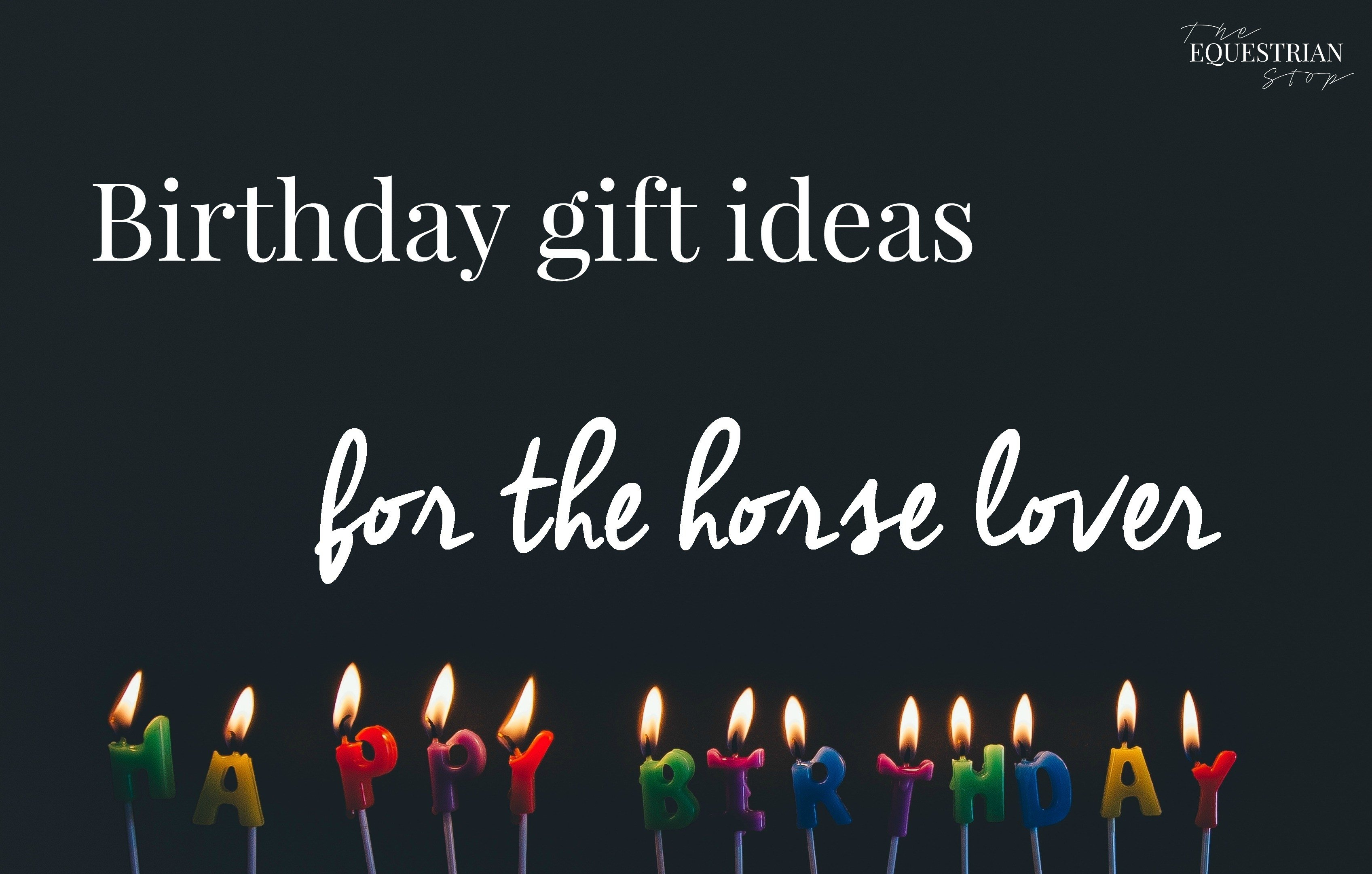 10 Famous Gift Ideas For Horse Lovers birthday gift ideas for the horse lover