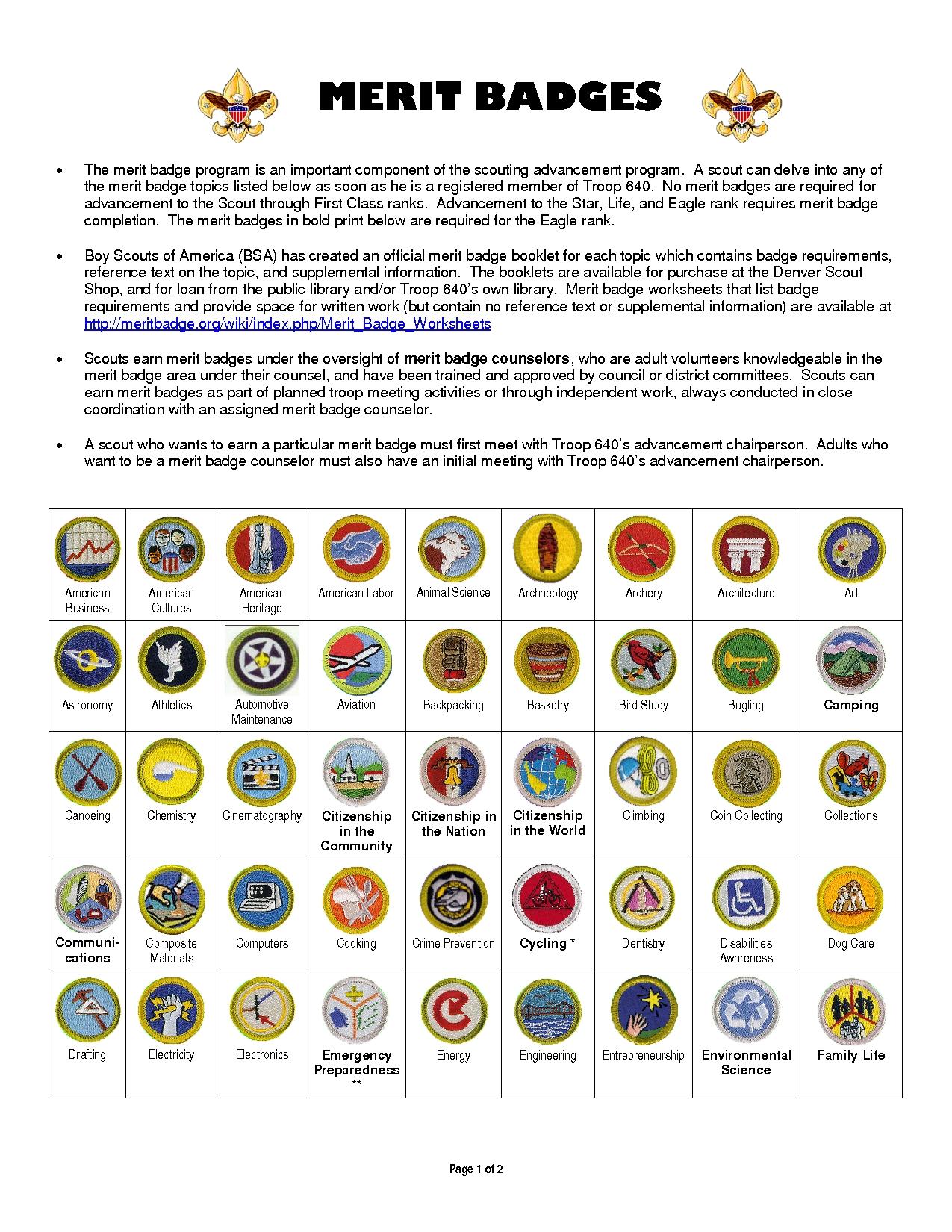 10 Gorgeous Family Life Merit Badge Project Ideas boy scout merit badges diy crafts pinterest merit badge 2020