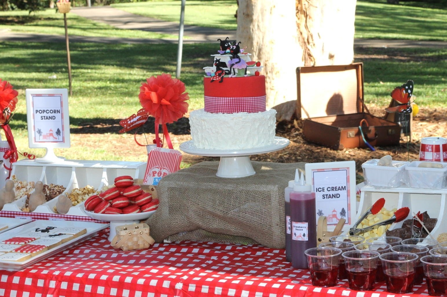 10 Trendy Picnic In The Park Ideas bubble and sweet ant picnic in the park cake and cookies and a