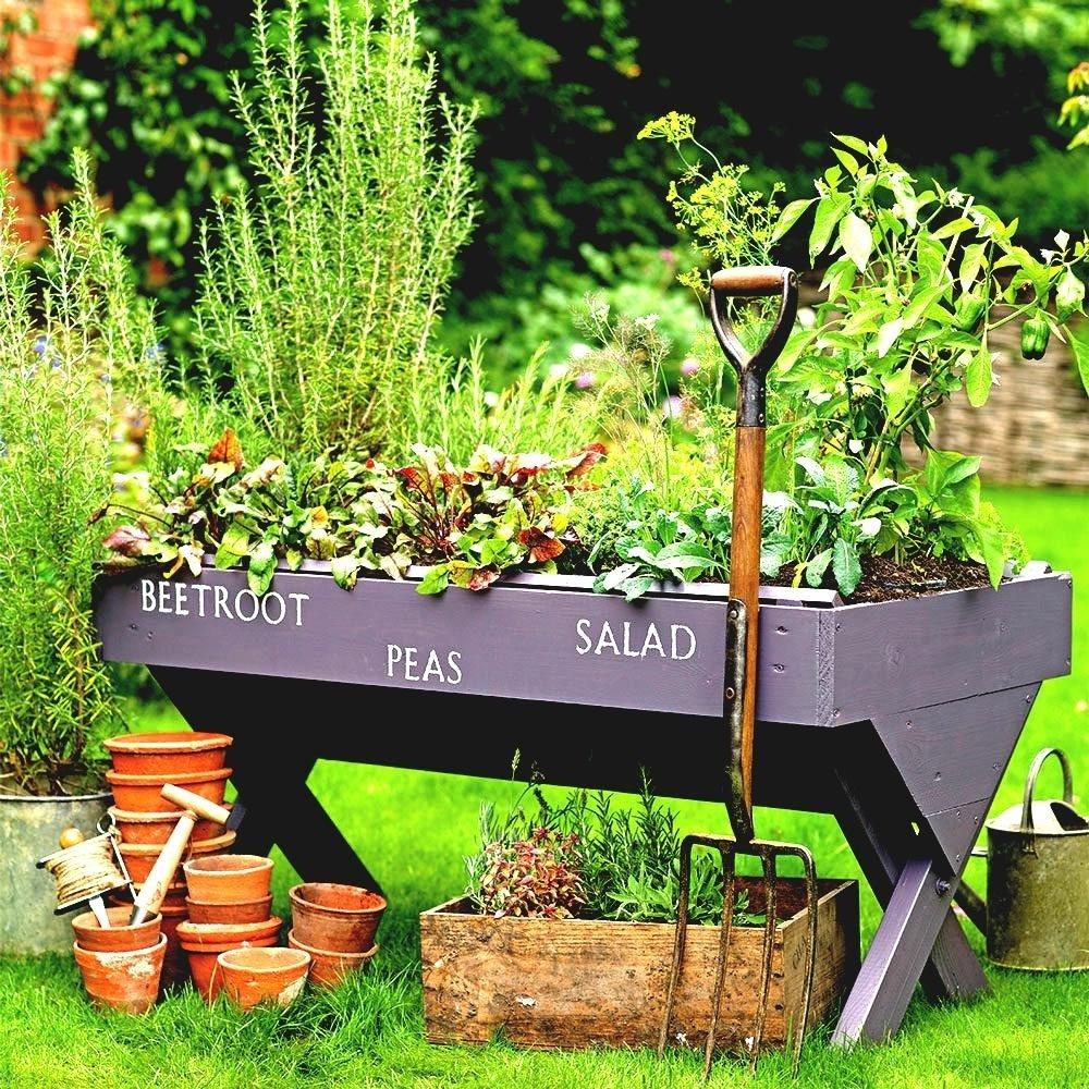 10 Perfect Garden Ideas On A Budget budget garden ideas cheap gardening designs create a mini vegetable 2021