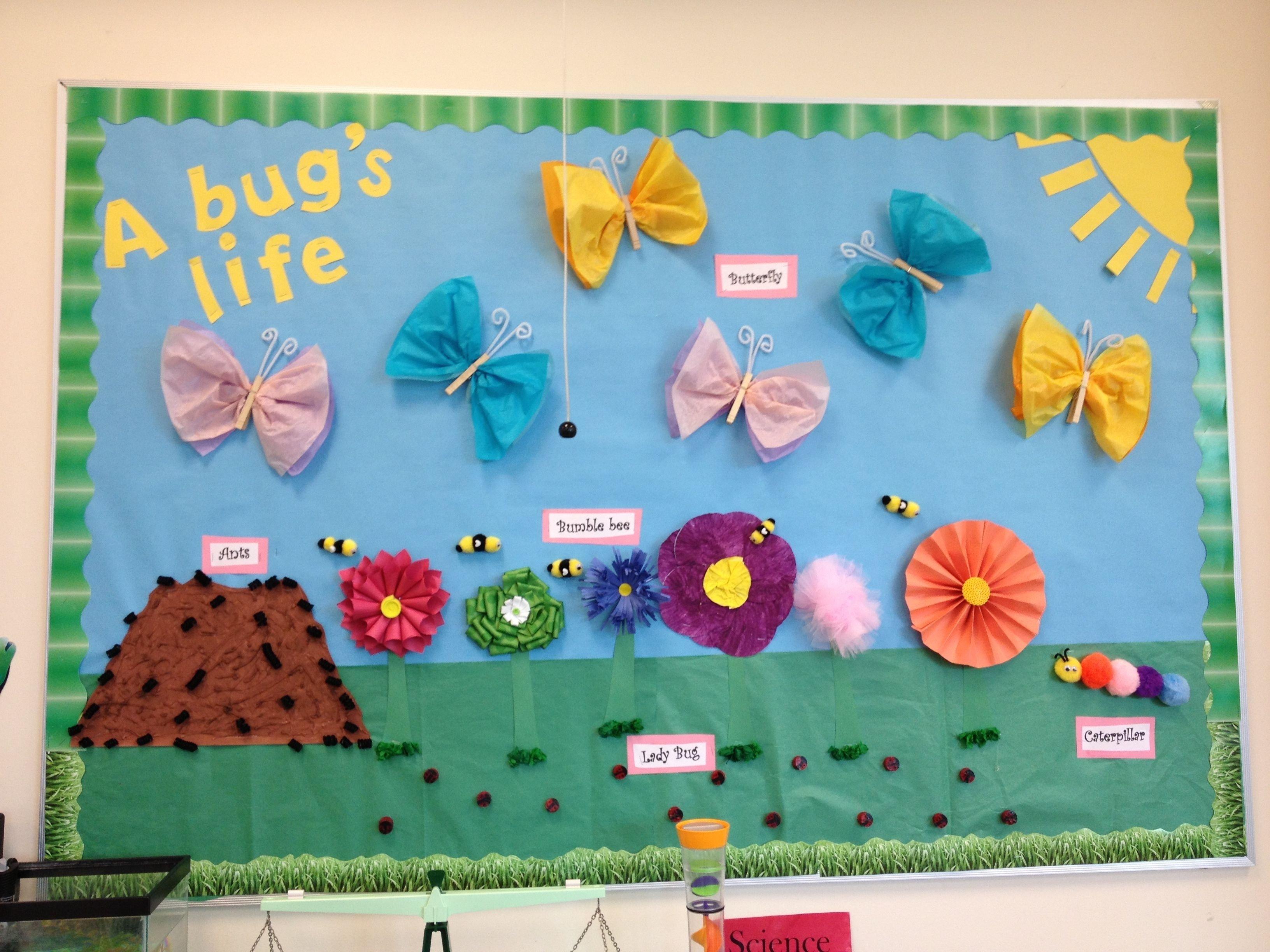 10 Trendy Spring Preschool Bulletin Board Ideas bulletin board about bugs preschool pinterest bulletin board 2020