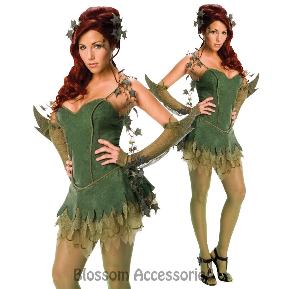 10 Stylish Villain Costume Ideas For Women c368 poison ivy batman villain batgirl superhero fancy dress  sc 1 st  Unique Ideas 2018 & 10 Stylish Villain Costume Ideas For Women