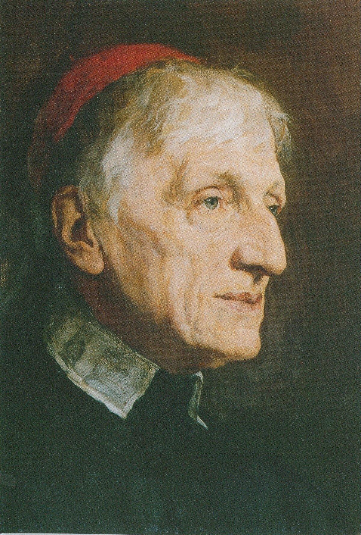 10 Awesome John Henry Newman The Idea Of A University cardinal newmans gentleman blessed cardinal john henry newman